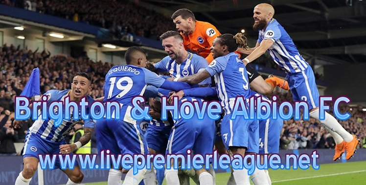 Brighton and Hove Albion 2019 Live Stream