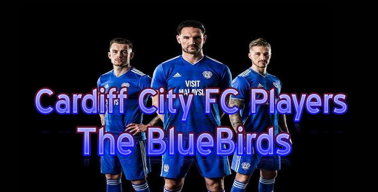 Cardiff City 2019 Live Stream